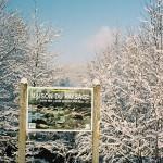 Paysage-de-neige-5
