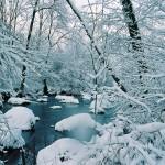 Paysage-de-neige-La-Rouvre-9